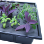 AeroRooter 36 Site Aeroponic System